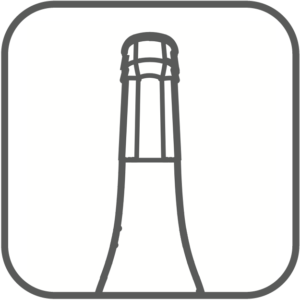 Icon i500 Scanspitze